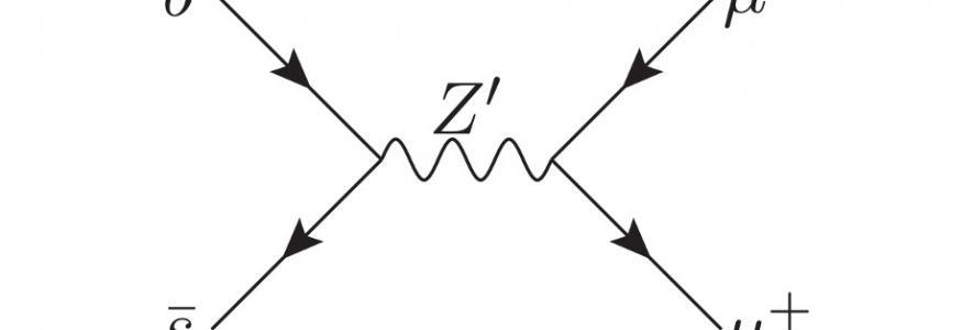 Feynmann Diagram